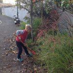 Jardinage 1