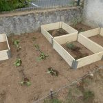 Jardinage 6